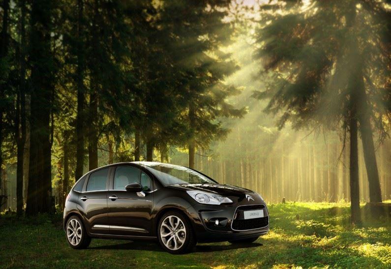 12.000 m2 de bosque Citroën