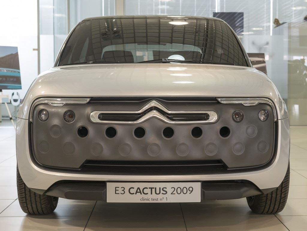 Cactus_2009
